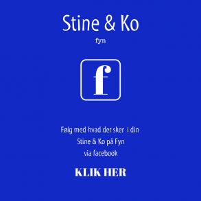 Facebook Fyn